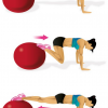 Exercise Ball Pull-In Main muscle: abdominals